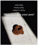 poo poster